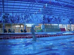 תרגילים בשחייה