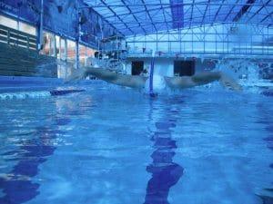 אימוני שחייה