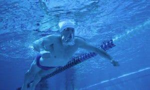 אימון שחיה
